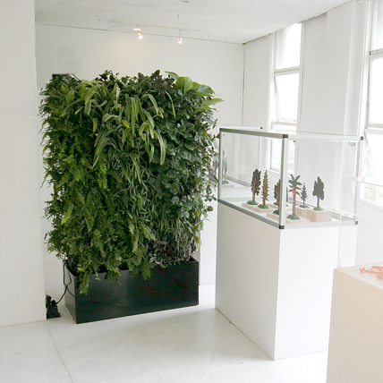 Another Advantage Of Having A Green Wall Is That It Saves A Lot Of Space.  If The Same Number Of Plants That We Use On Our Living Walls Were Growing  In Pots ...